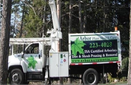 Arbor tree boom truck